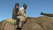 Ellen Hinz reitet mit einem Tierpfleger auf einem Elefanten. © Vincent TV GmbH /NDR