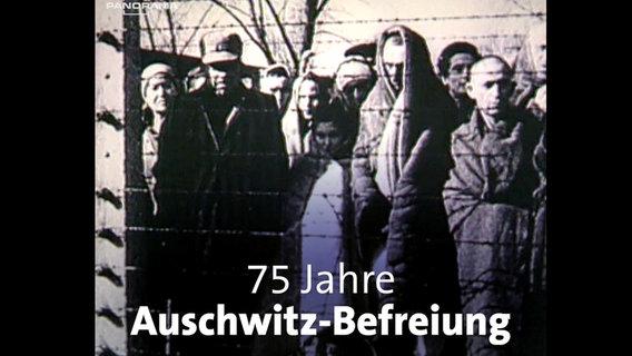 Auschwitz © NDR