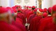 Bischöfe von hinten gesehen bei der Bischofskonferenz in Fulda © picture-alliance/ dpa Foto: Arne Dedert