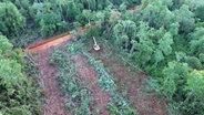 Bagger fällt Bäume im indonesischen Regenwald © NDR Foto: Screenshot