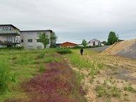 Königslutter: Giftige Asche im Wohngebiet?