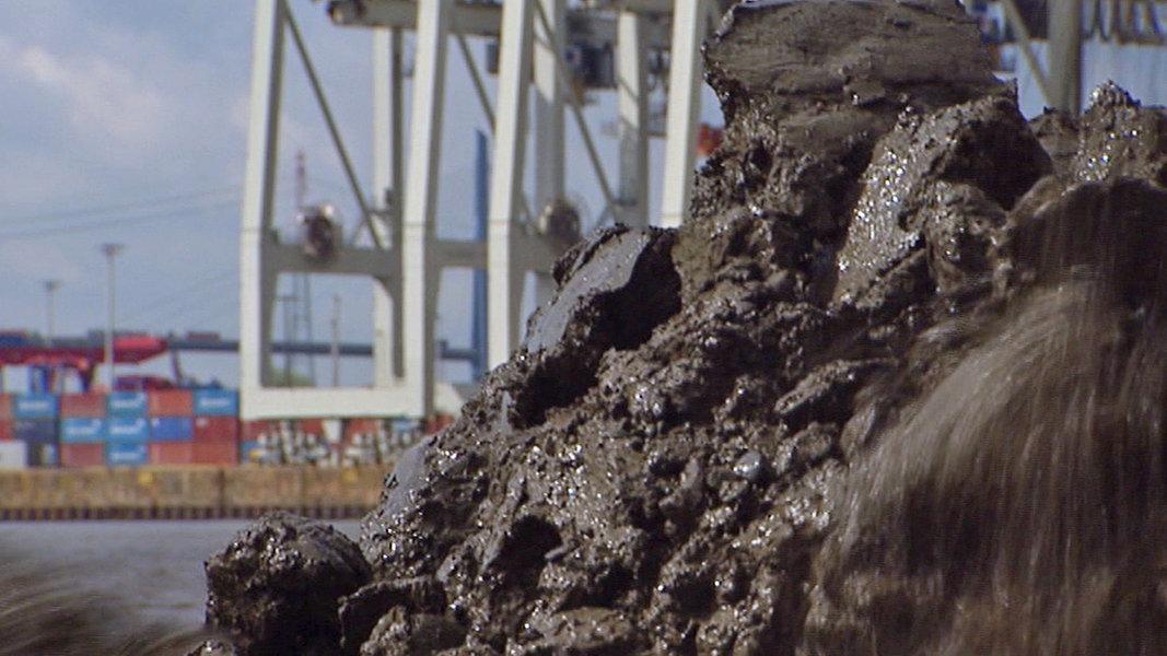Schlick im Watt: Umweltschützer warnen vor Folgen